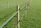 Advancetown Electric fencing 4